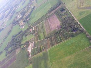 Laanboomkwekerij Geurkink Luchtfoto